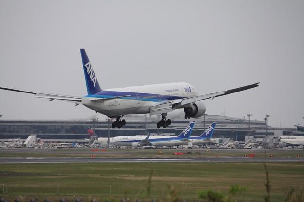 全日空 ANA ボーイング777-300ER JA735A (8)
