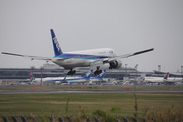 全日空 ANA ボーイング777-300ER JA735A (9)
