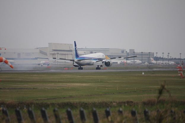 写真: 全日空 ANA ボーイング777-300ER JA735A 着陸 (3)