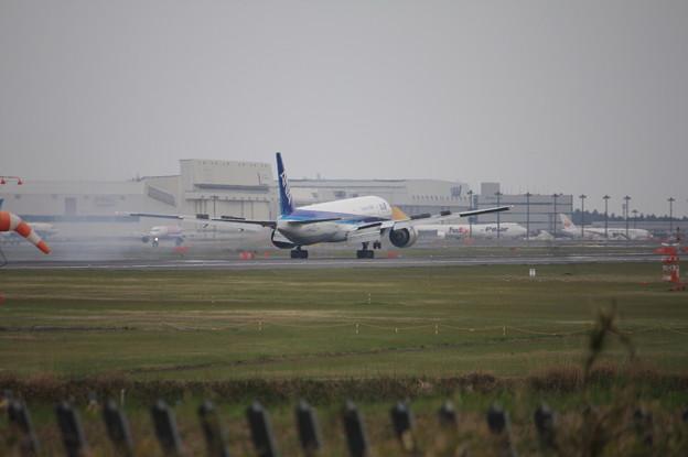全日空 ANA ボーイング777-300ER JA735A 着陸 (3)