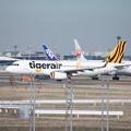 写真: タイガーエア台湾 エアバスA320-200 B-50008