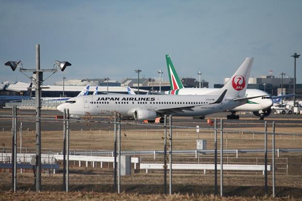 日本航空 JAL ボーイング737-800 JA315J