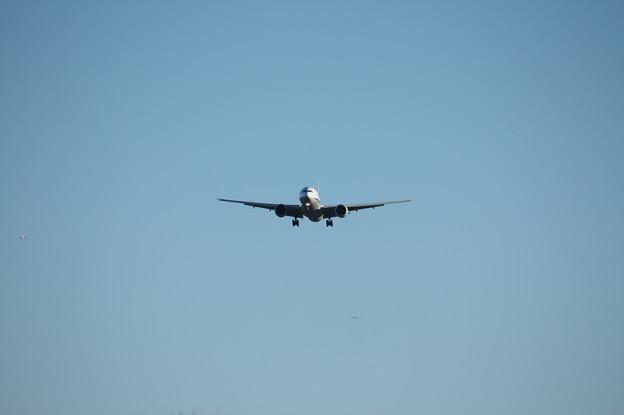 A滑走路に着陸するANAボーイング777-300ER