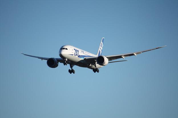 A滑走路に着陸するANAボーイング787-8