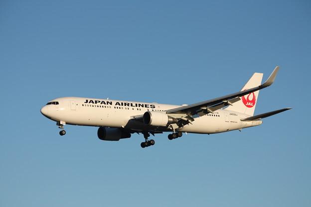 日本航空 JAL ボーイング767-300ER JA608J