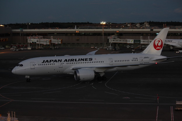 Photos: 日本航空 JAL ボーイング787-8 JA845J