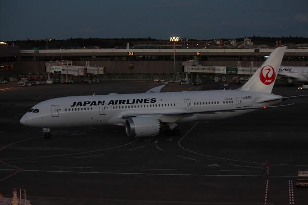 Photos: 日本航空 JAL ボーイング787-8 JA845J
