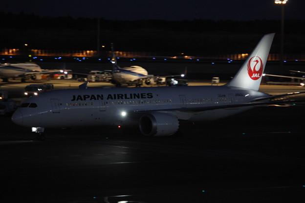 日本航空 JAL ボーイング787-8 JA843J