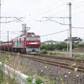 安中貨物 5094レ EH500-78牽引 (1)