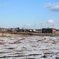 積雪の中を行くEH500コンテナ貨物列車 (7)