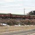 冬の田園風景を行く安中貨物5094レ (1)