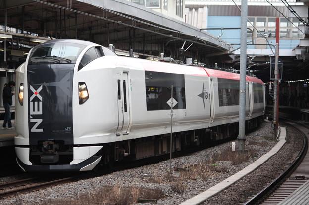 E259系Ne004編成 成田エクスプレス