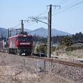 2095レ EH500-59+コキ (2)
