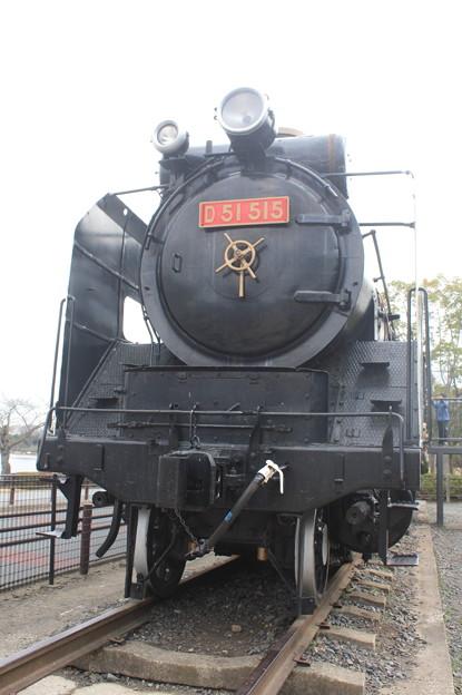 千波湖公園に保存されているD51 515 (3)