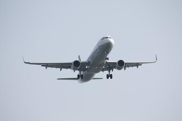 Photos: ANA A321-200N JA113A