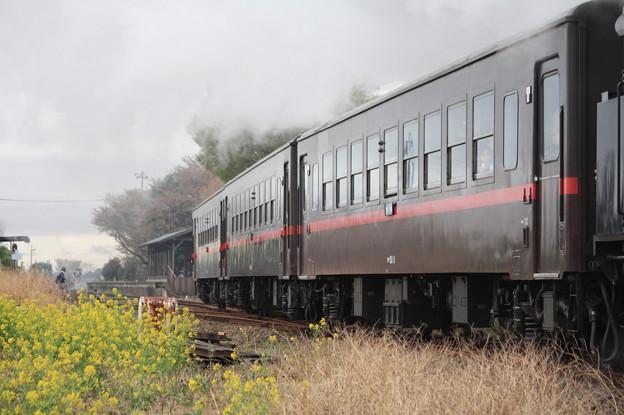 オハ50 11
