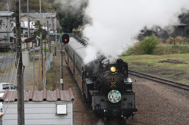 茂木駅構内でバックして入れ換えを行うSLもおかC12 66 (4)