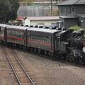 Photos: 茂木駅構内で入れ換えを行い機回し線に入るSLもおかC12 66