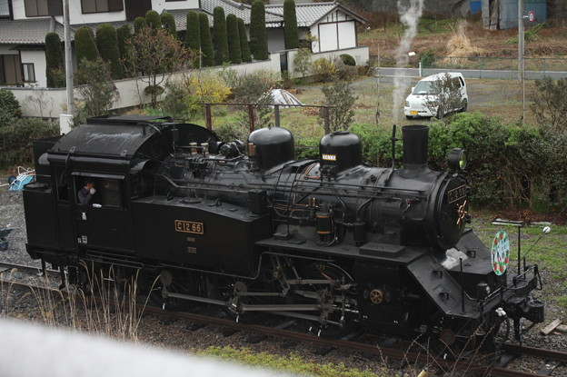 Photos: 茂木駅構内で客車と切り離し転車台へ向かうC12 66 (1)