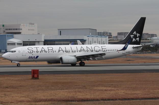 ANA B737-800 JA51AN スターアライアンス塗装 (3)