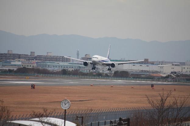 全日空 ANA B767-300 JA8324