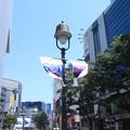 渋谷散策 20180505_01