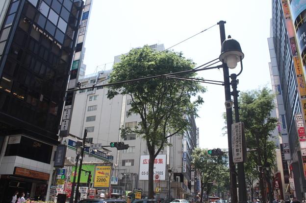 渋谷散策 20180505_05