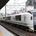 E259系Ne013編成 成田エクスプレス