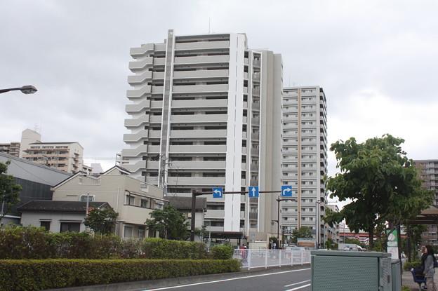 平井散策 20180616_20