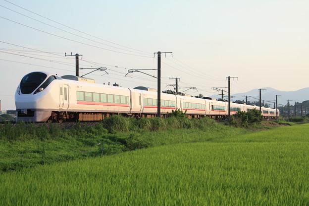 夏日の田園風景を行くE657系 (6)