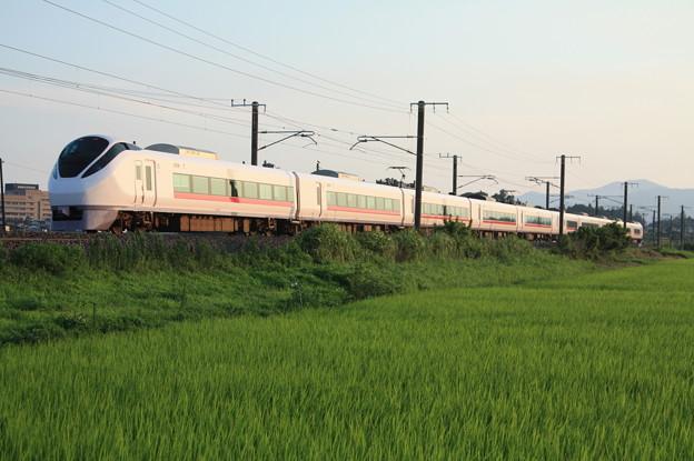 夏日の田園風景を行くE657系 (7)