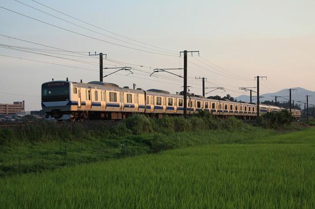 夏日の田園風景を行くE531系 (8)