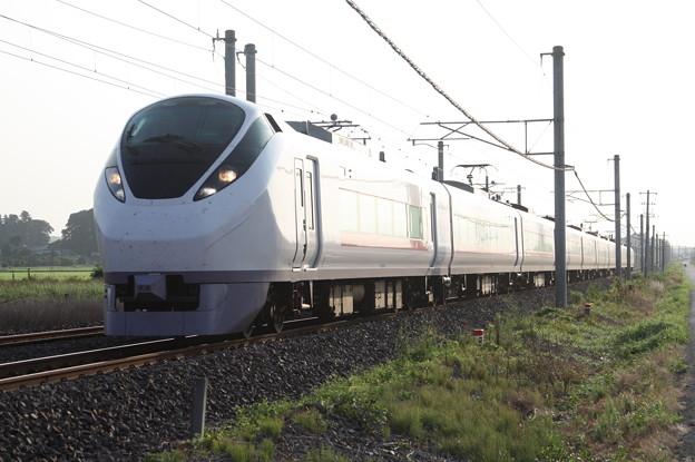 E657系K9編成 2054M 特急ときわ54号 上野 行
