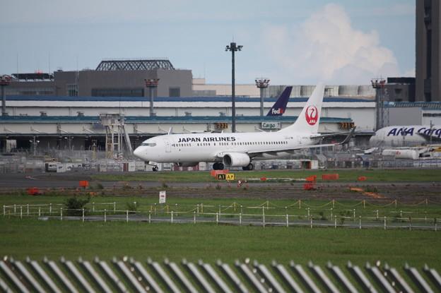 日本航空 JAL B737-800 JA304J