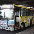 関東鉄道 1833MT 「クリーニング専科」ラッピング (2)