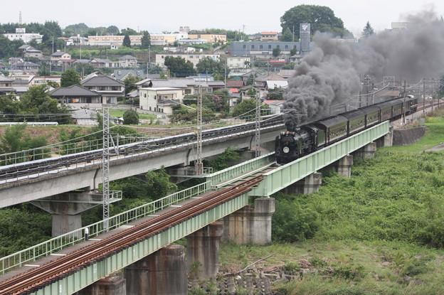 SLレトロ碓氷 D51 498+旧客6B+EF64 1052 安中鉄橋 (3)