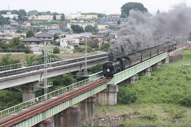 SLレトロ碓氷 D51 498+旧客6B+EF64 1052 安中鉄橋 (5)