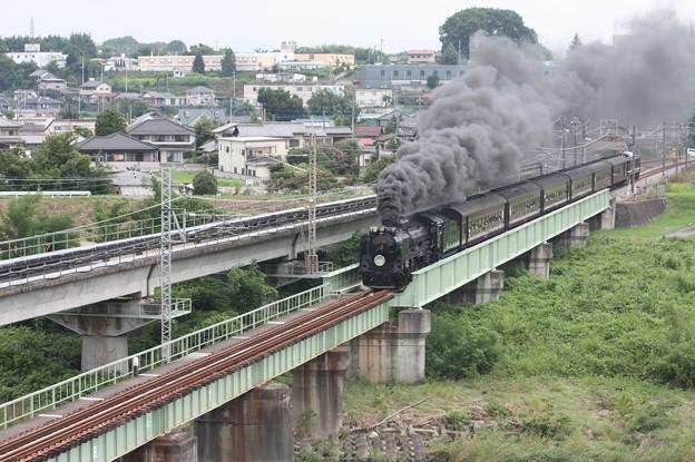 SLレトロ碓氷 D51 498+旧客6B+EF64 1052 安中鉄橋 (6)