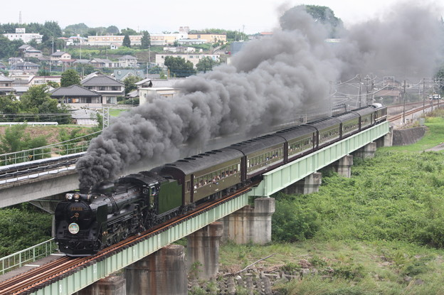 SLレトロ碓氷 D51 498+旧客6B+EF64 1052 安中鉄橋 (12)