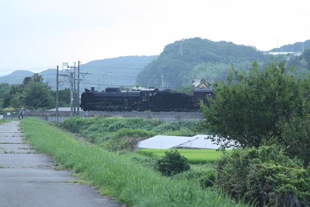 ELレトロ碓氷 EF64 1052+旧客6B+D51 498 安中鉄橋付近 (11)
