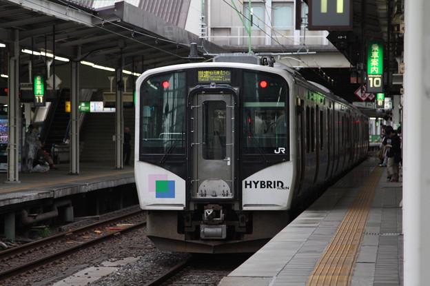 仙石東北ライン HB-E210系C1編成 (1)