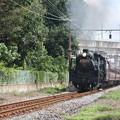 秩父鉄道 パレオエクスプレス 5001レ C58 363+12系客車4B 石原~ひろせ野鳥の森 (1)