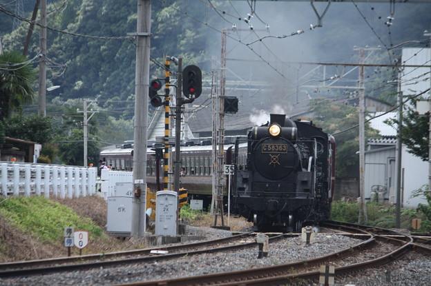 秩父鉄道 パレオエクスプレス 5001レ C58 363+12系客車4B 波久礼付近