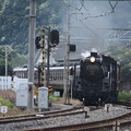 写真: 秩父鉄道 パレオエクスプレス 5001レ C58 363+12系客車4B 波久礼付近