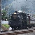 写真: 秩父鉄道 パレオエクスプレス 5001レ C58 363+12系客車4B 波久礼付近 (2)