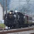 写真: 秩父鉄道 パレオエクスプレス 5001レ C58 363+12系客車4B 波久礼付近 (3)