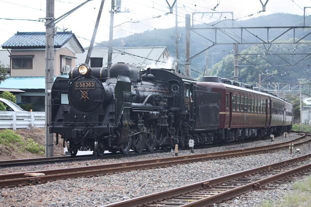 秩父鉄道 パレオエクスプレス 5001レ C58 363+12系客車4B 波久礼付近 (5)