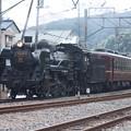 写真: 秩父鉄道 パレオエクスプレス 5001レ C58 363+12系客車4B 波久礼付近 (5)