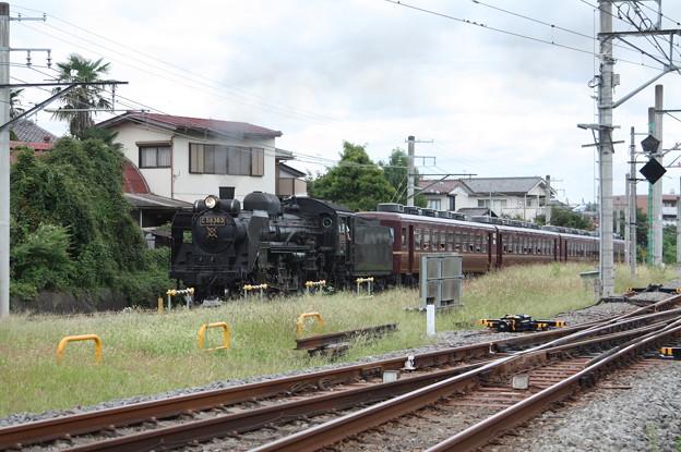 秩父鉄道 パレオエクスプレス 5001レ C58 363+12系客車4B 秩父~御花畑 (5)