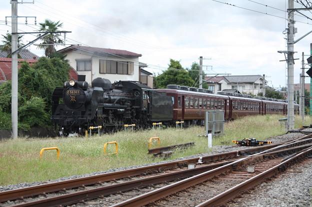 秩父鉄道 パレオエクスプレス 5001レ C58 363+12系客車4B 秩父~御花畑 (9)